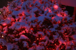 """""""The reflection of the lights on the fresh snow added to the illumination of the house..."""""""