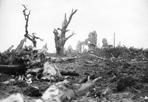 In terms of sheer destruction the countries of Europe had never experienced anything like World War I